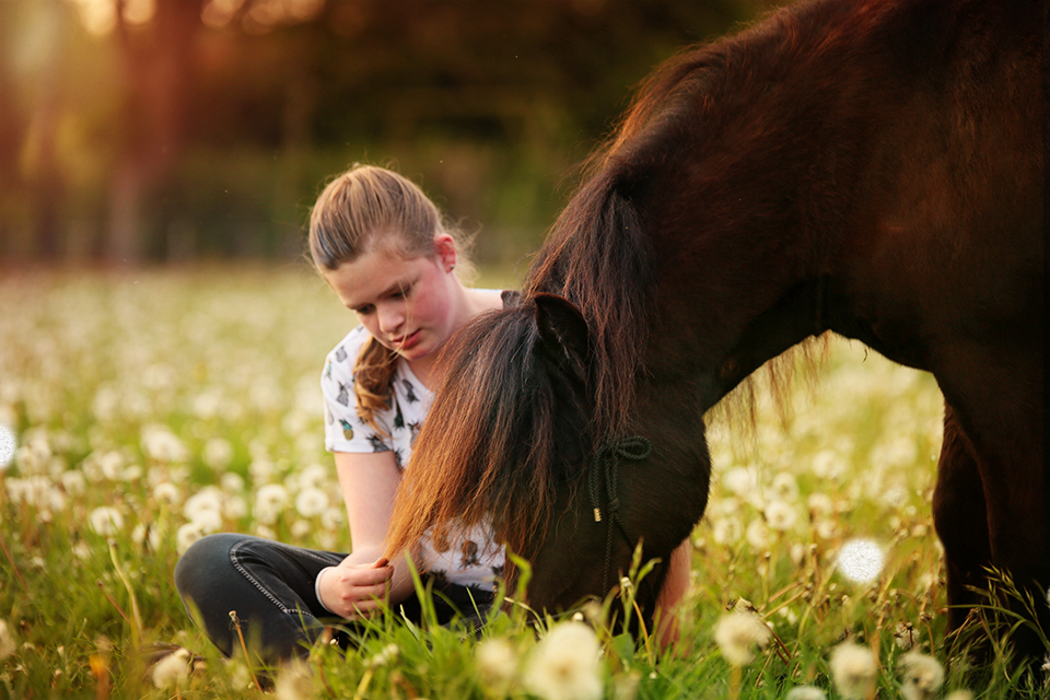 Ellen Pitlo Paardenfotografie