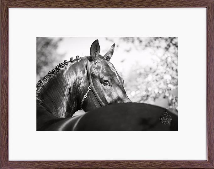 Donker bruine houten fotolijst vooraanzicht_thumb_900x900