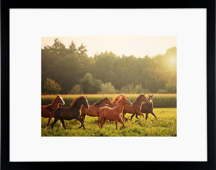 Tom TZwarte houten fotolijst vooraanzicht_thumb_900x900